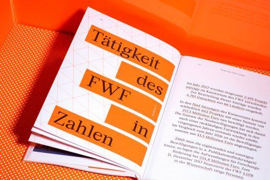 FWF Grundlage Forschung Bericht Doppelseite Detail