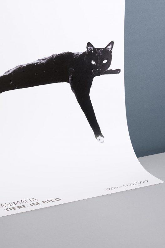Leica Galerie Wien Poster mit schwarzer Katze zu