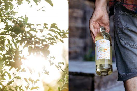 Flasche Most des Biobauernhof Orth