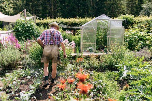 Orth Biobauernhof Blumen-, Obst- und Gemüsegarten
